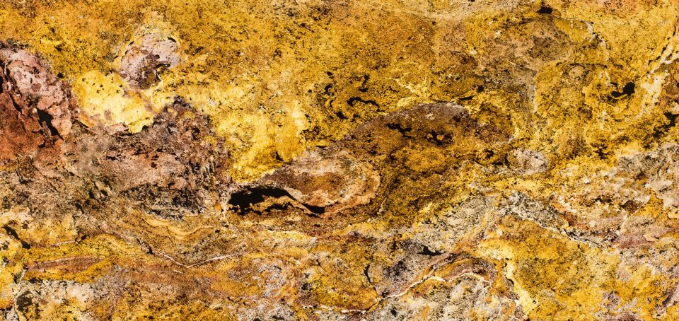 Feuille de pierre 100% naturelle StoneLeaf Translucide modèle Prague